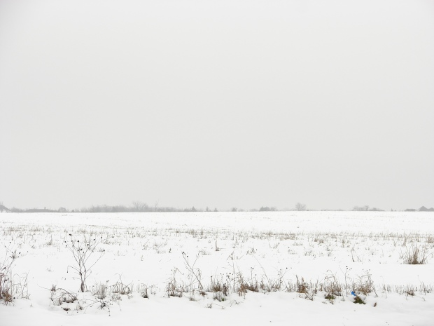 snow-field-3938